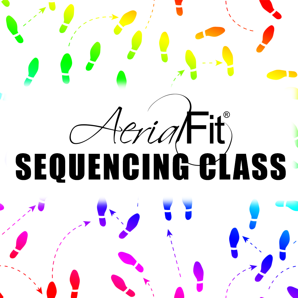 Aerial Fit: Aerial And Circus Arts