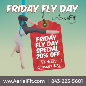 Aerial classes on Friday
