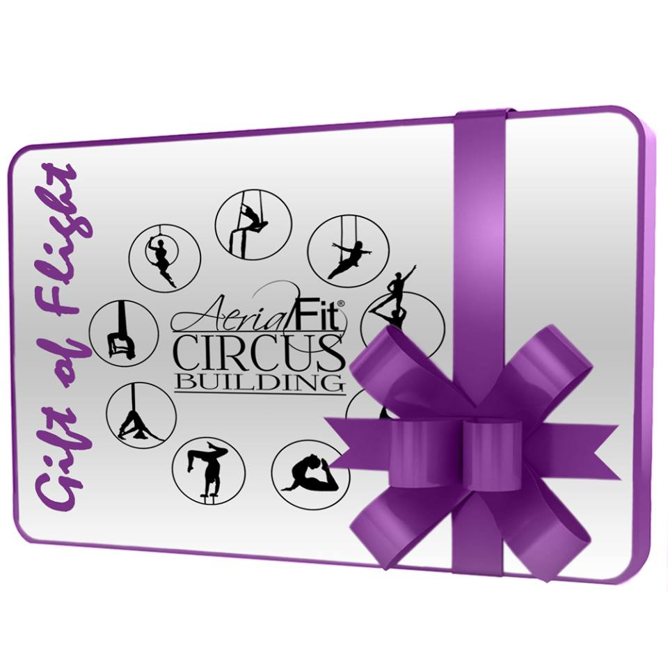 Aerial Gift Certificate