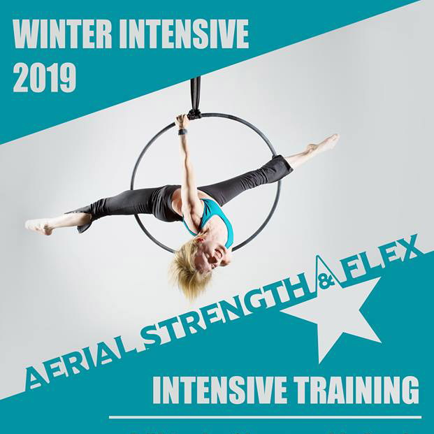 Aerial Fit Winter Intensive